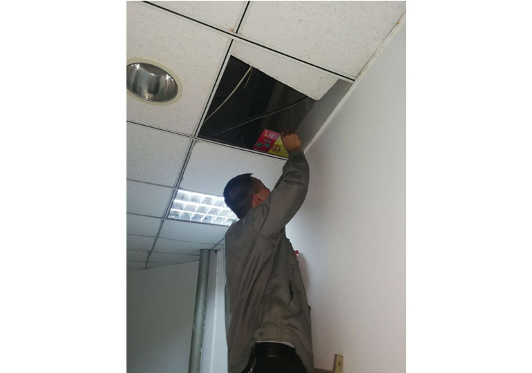 室内天花上布控鼠板